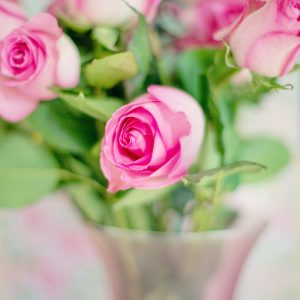 Nos Bouquets