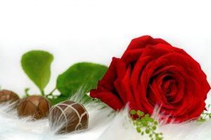 DUO PASSION - 12 roses avec boite de chocolat