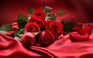 ROUGE BAISER - 12 roses